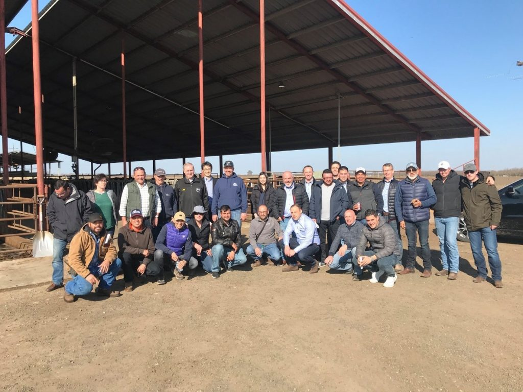 The group at Double B Dairy. Double B Dairy production reaches 11.340 kg of milk, 4.30%F, 3,71%P, 35,4kg of milk/day, for 1.900 milking ProCROSS cows.